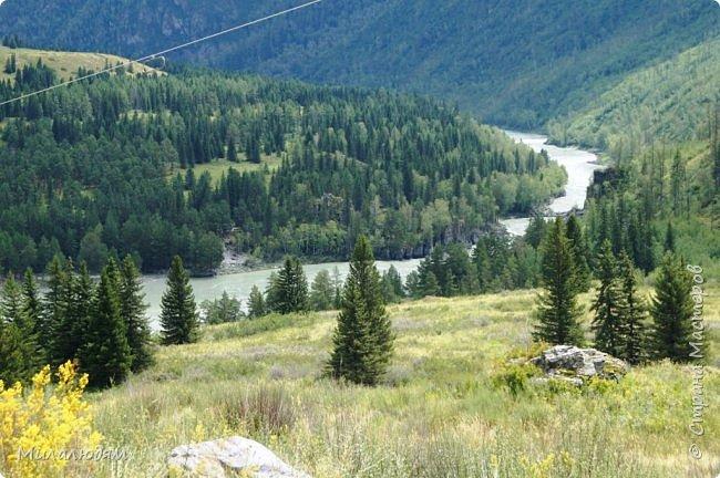 Всем здравствуйте! Приглашаю вас с собой в путешествие по Горному Алтаю. Зарядиться его мощной энергией и полюбоваться его красотами и величием. фото 43