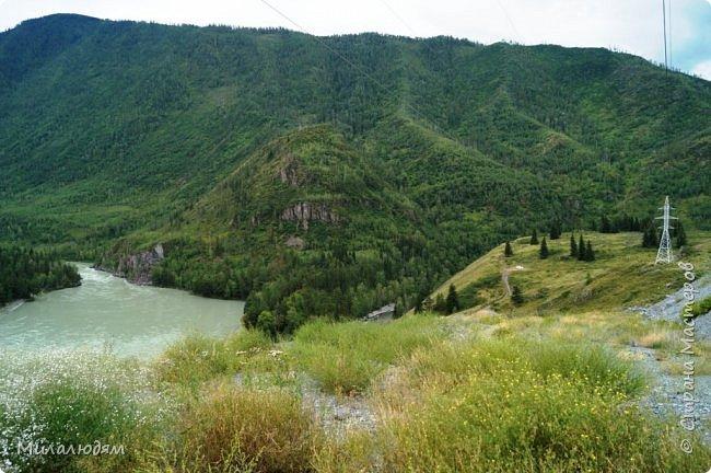 Всем здравствуйте! Приглашаю вас с собой в путешествие по Горному Алтаю. Зарядиться его мощной энергией и полюбоваться его красотами и величием. фото 62