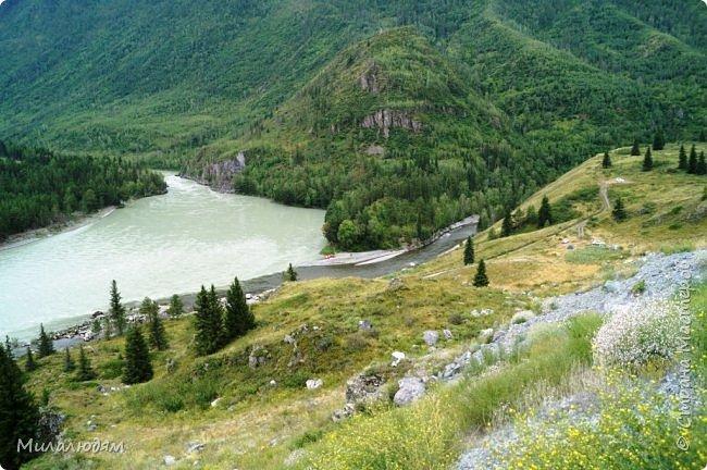 Всем здравствуйте! Приглашаю вас с собой в путешествие по Горному Алтаю. Зарядиться его мощной энергией и полюбоваться его красотами и величием. фото 64