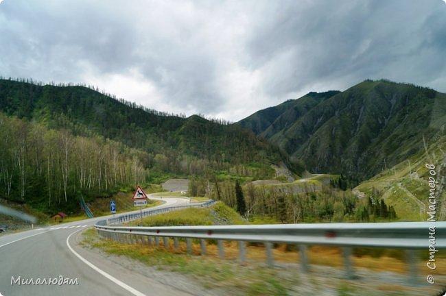Всем здравствуйте! Приглашаю вас с собой в путешествие по Горному Алтаю. Зарядиться его мощной энергией и полюбоваться его красотами и величием. фото 78