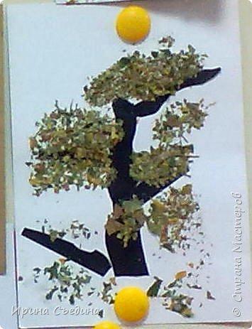 Аппликация делается очень просто: вырезается силуэт дерева, сверху по веткам наносится слой клея и посыпается поломанными листьями. Работа готова! фото 1
