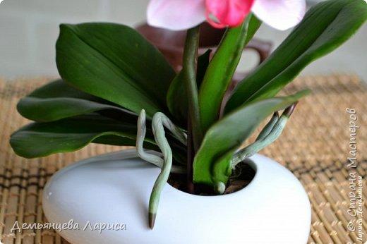 Орхидея - холодный фарфор фото 3