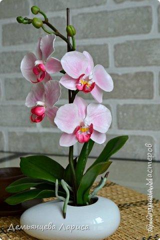 Орхидея - холодный фарфор фото 7