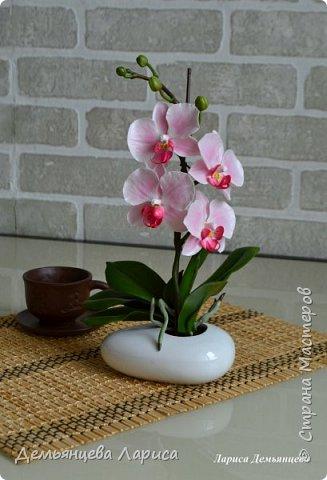 Орхидея - холодный фарфор фото 8