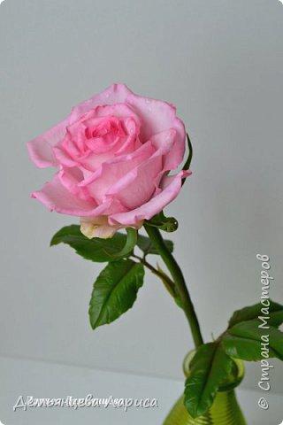 Розовая роза из полимерной глины  фото 1
