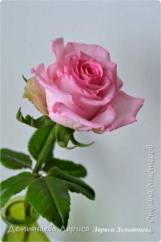 Розовая роза из полимерной глины  фото 3