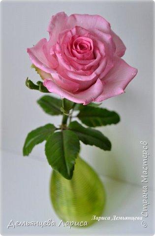 Розовая роза из полимерной глины  фото 8