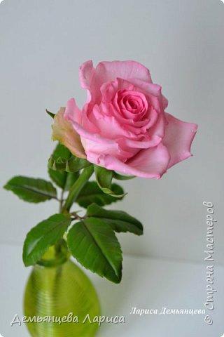 Розовая роза из полимерной глины  фото 4