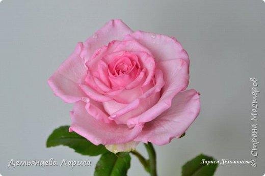 Розовая роза из полимерной глины  фото 6