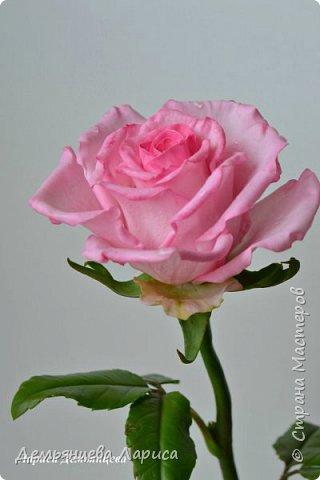 Розовая роза из полимерной глины  фото 7
