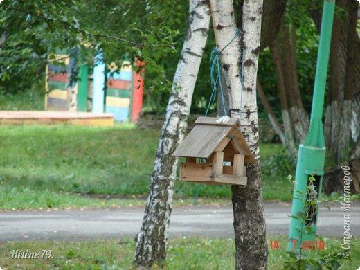 Добрый день, дорогие жители СМ! Приглашаю ВАС продолжить нашу прогулку по старому уютному саду. фото 2