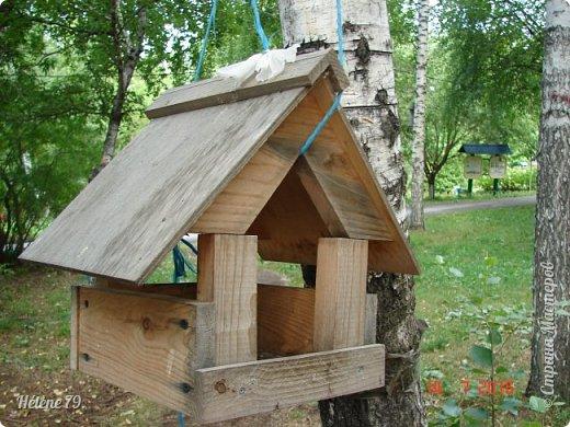 Добрый день, дорогие жители СМ! Приглашаю ВАС продолжить нашу прогулку по старому уютному саду. фото 4