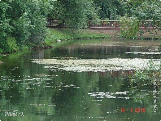 Добрый день, дорогие жители СМ! Приглашаю ВАС продолжить нашу прогулку по старому уютному саду. фото 9