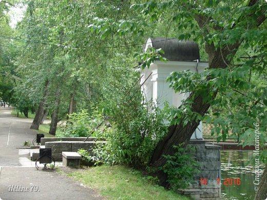 Добрый день, дорогие жители СМ! Приглашаю ВАС продолжить нашу прогулку по старому уютному саду. фото 28