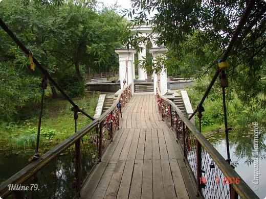 Добрый день, дорогие жители СМ! Приглашаю ВАС продолжить нашу прогулку по старому уютному саду. фото 30