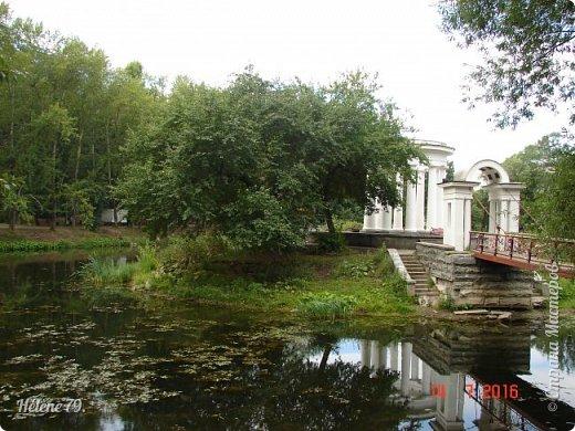 Добрый день, дорогие жители СМ! Приглашаю ВАС продолжить нашу прогулку по старому уютному саду. фото 37