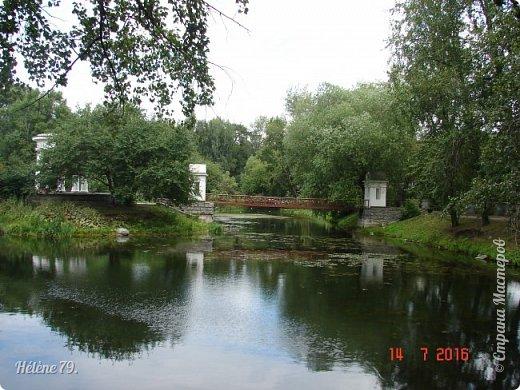 Добрый день, дорогие жители СМ! Приглашаю ВАС продолжить нашу прогулку по старому уютному саду. фото 38