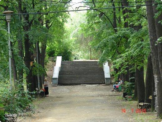 Добрый день, дорогие жители СМ! Приглашаю ВАС продолжить нашу прогулку по старому уютному саду. фото 41