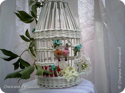 Здравствуйте дорогие жители Страны Мастеров. Сделала немного декоративных вещичек для красоты. Клеточка плетаня декоративная,для цветов,птичек,флористики фото 3