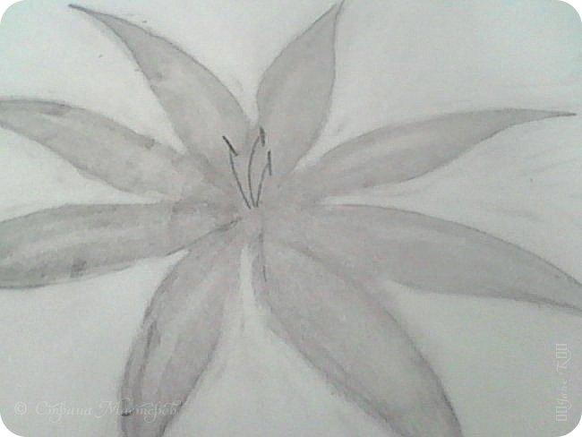 Здравствуйте жители Страны Мастеров!!! Такую лилию можно подарить на 8 марта и на Валентинов День. фото 18