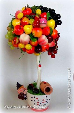Здравствуй страна! Мой новенький ягодно-фруктовый топиарий)) фото 3