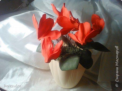 """Первый раз делала топиарий, результатом довольна) Использованы цветы: пион (МК Асатуровой), """"ленивые"""" эустомы (МК Мурзилка Моя), хлопок (МК Горячевой), морозник (внизу) делала сама по фото Оранжевые цветочки тоже без мк фото 5"""