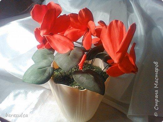 """Первый раз делала топиарий, результатом довольна) Использованы цветы: пион (МК Асатуровой), """"ленивые"""" эустомы (МК Мурзилка Моя), хлопок (МК Горячевой), морозник (внизу) делала сама по фото Оранжевые цветочки тоже без мк фото 6"""