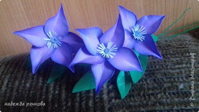 Добрый вечер мастера,мастерицы,а также гости СМ.Представляю вашему вниманию мои цветочки.Приятного просмотра. фото 2