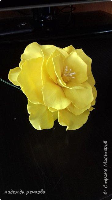 Добрый вечер мастера,мастерицы,а также гости СМ.Представляю вашему вниманию мои цветочки.Приятного просмотра. фото 9