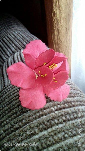 Добрый вечер мастера,мастерицы,а также гости СМ.Представляю вашему вниманию мои цветочки.Приятного просмотра. фото 12