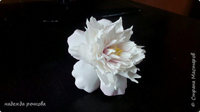 Добрый вечер мастера,мастерицы,а также гости СМ.Представляю вашему вниманию мои цветочки.Приятного просмотра. фото 10