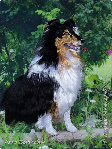 Собачка породы Шелти. Вышивка лентами. фото 1