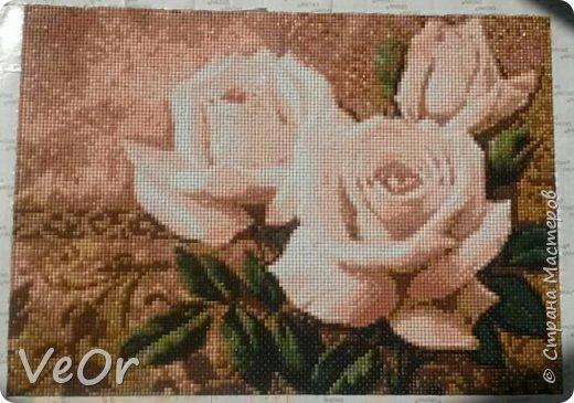Первая работа в технике алмазная вышивка, хотя процесс вышиванием сложно назвать, скорее мозаика)) фото 1
