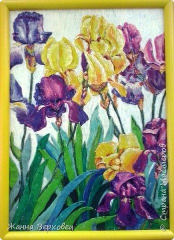 Я очень люблю рисовать всякие-разные цветы. Вот решила нарисовать ирисы.  Очень трудно это делать пластилином. Но, чем больше работаю с пластилином, тем более убеждаюсь в том, какой это интересный материал.  Вот такие ирисы у меня получились! Мне нравятся!