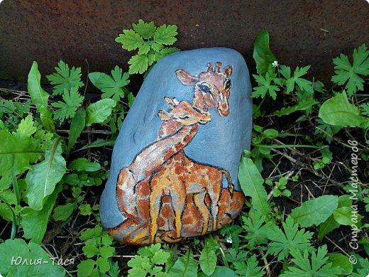 Рисую на камнях и коже)) Много фото) фото 1