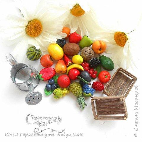 Сегодня покажу новиночки из раздела фрукты/ягоды)) фото 1