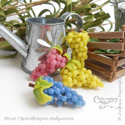 Сегодня покажу новиночки из раздела фрукты/ягоды)) фото 2