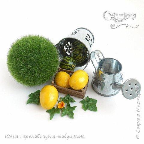 Сегодня покажу новиночки из раздела фрукты/ягоды)) фото 7