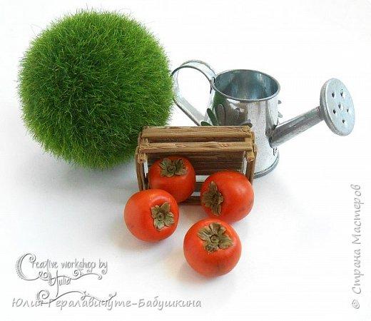 Сегодня покажу новиночки из раздела фрукты/ягоды)) фото 8