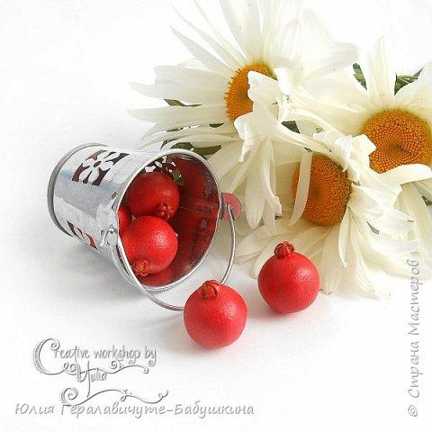Сегодня покажу новиночки из раздела фрукты/ягоды)) фото 9