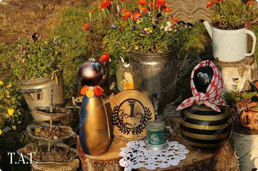 Познакомьтесь с новоселами моего участка.  Муха Цокотуха и бабушка Пчела. фото 21
