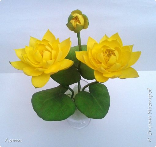 """""""Желтая кувшинка"""" фото 3"""