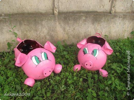 Свинки из пластиковых бутылок  фото 6