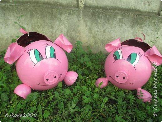 Свинки из пластиковых бутылок  фото 1