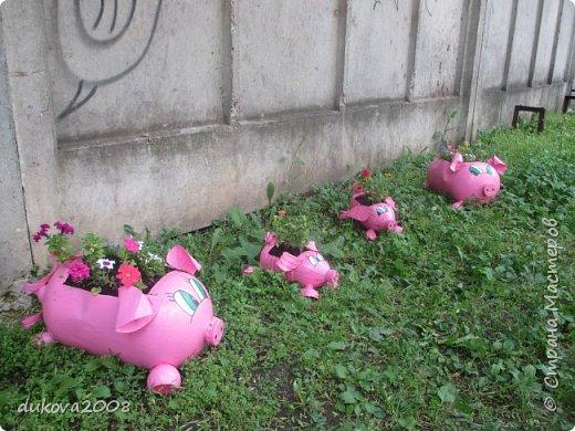 Свинки из пластиковых бутылок  фото 8