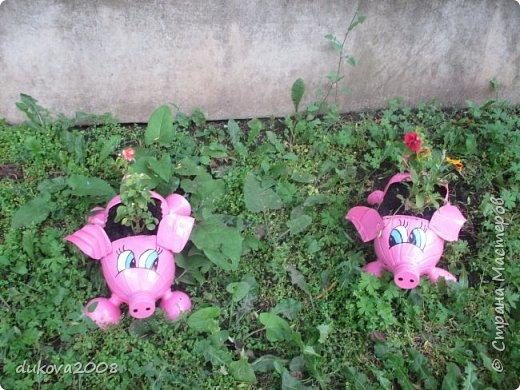 Свинки из пластиковых бутылок  фото 9