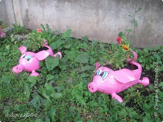 Свинки из пластиковых бутылок  фото 10