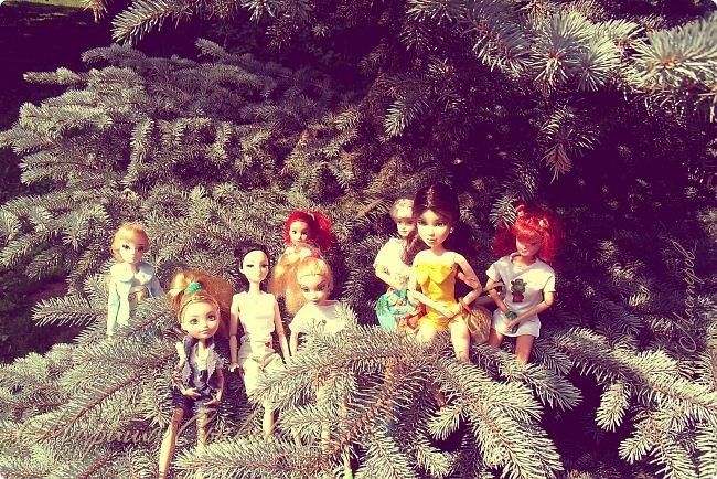 1 августа мы провели первую кукло-встречу . Встречались мои куклы и дочины с куклами Татьяны и Ксюши Воробьевых  фото 2