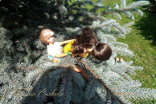 1 августа мы провели первую кукло-встречу . Встречались мои куклы и дочины с куклами Татьяны и Ксюши Воробьевых  фото 3