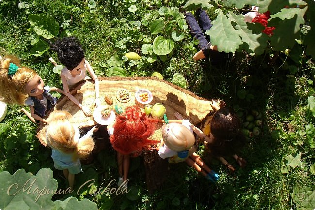 1 августа мы провели первую кукло-встречу . Встречались мои куклы и дочины с куклами Татьяны и Ксюши Воробьевых  фото 16